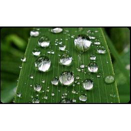 Усиление действия СЗР и удобрений